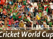 Cricket Fans during World Cup