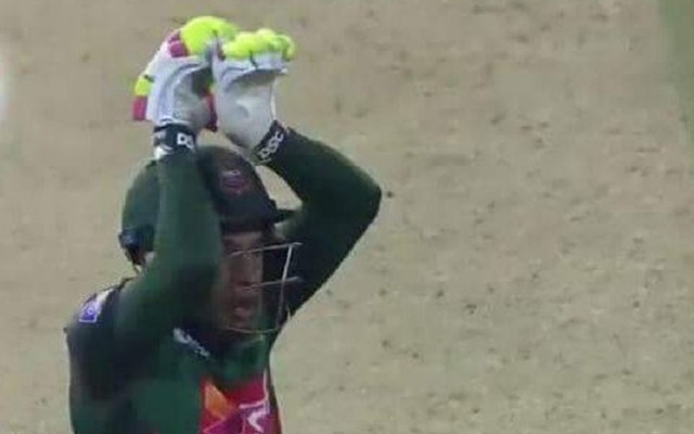 Mushfiqur Rahim brings out his snake celebration after the victory
