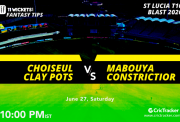StLuciaT10FI--Choiseul-Clay-Pots-vs-Mabouya-Constrictior