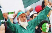 Chacha cricket