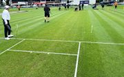 New Zealand vs West Indies first Test pitch