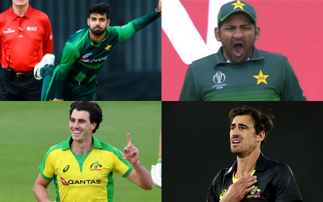 Shadab Khan, Sarfaraz Khan, Pat Cummins, Mitchell Starc