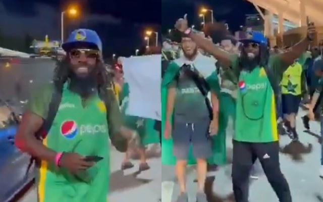 A cricket fan